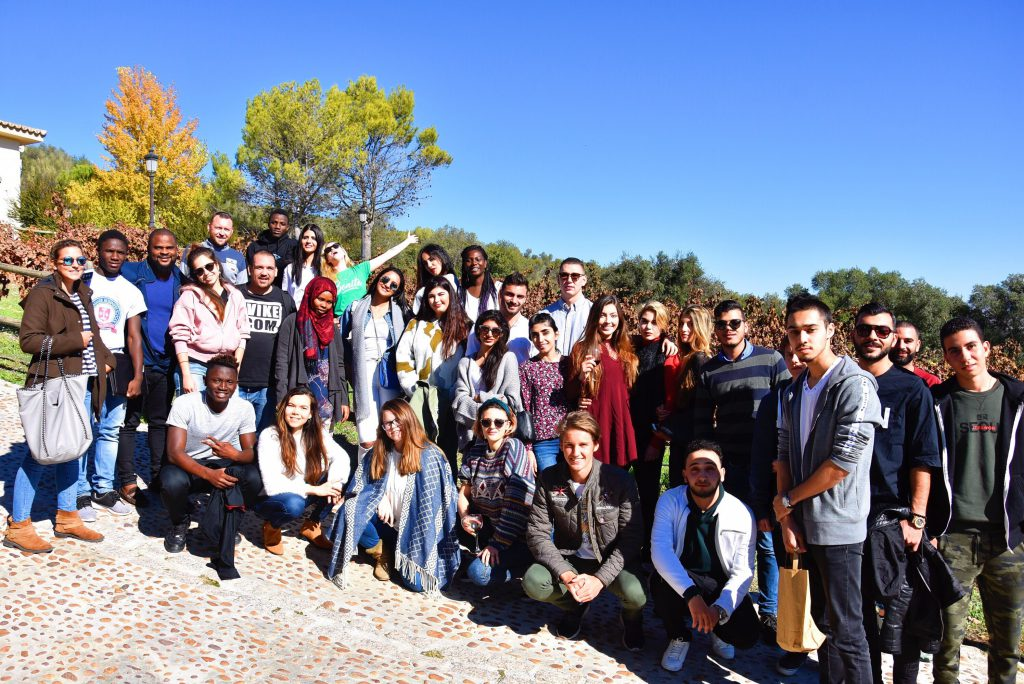 Study In Spain In English Schellhammer Business School